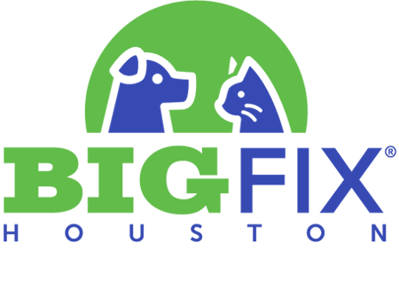 Big Fix Houston